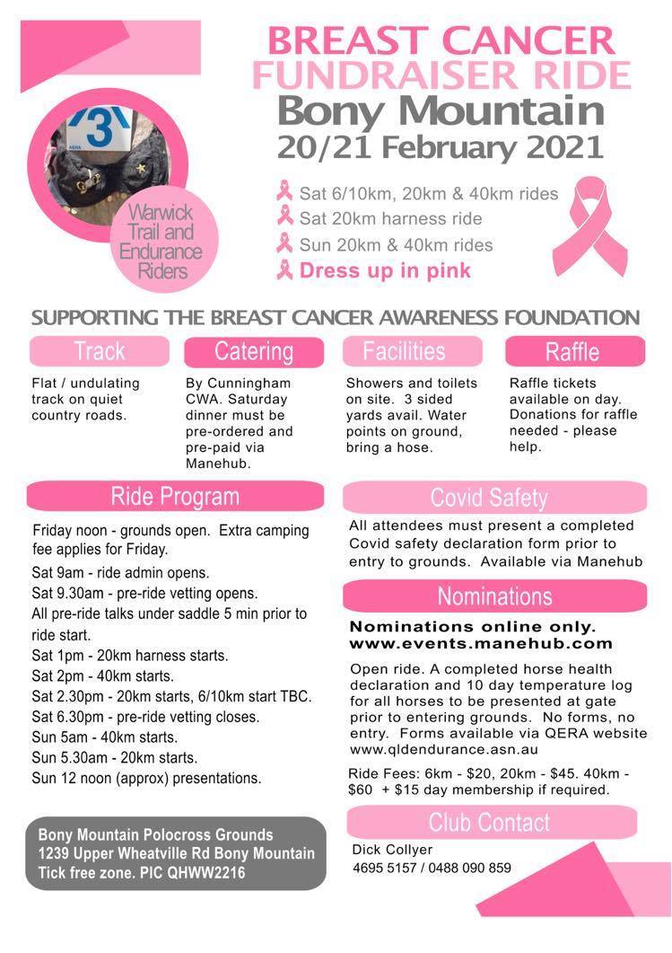 Breast Cancer Fund Raiser